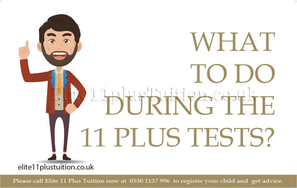 what-to-do-during-the-11-plus-tests